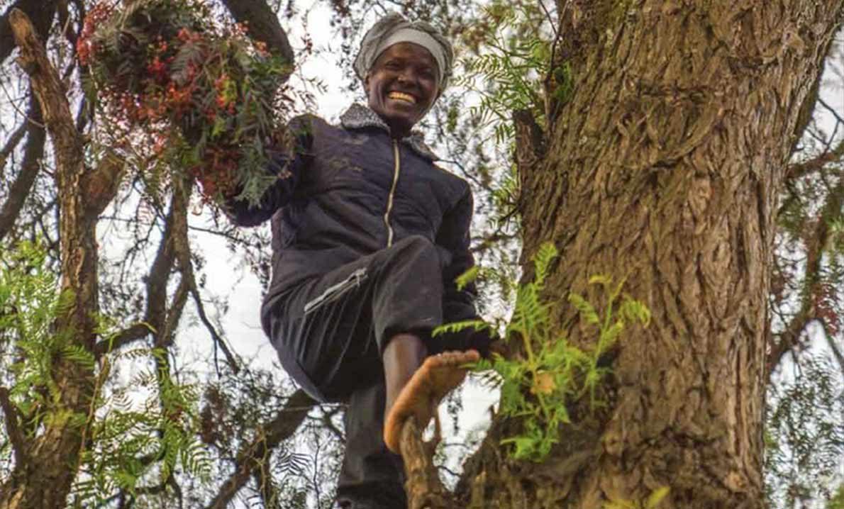 Fuentes de Cōimpacto dōTERRA favoreciendo a las economías en desarrollo